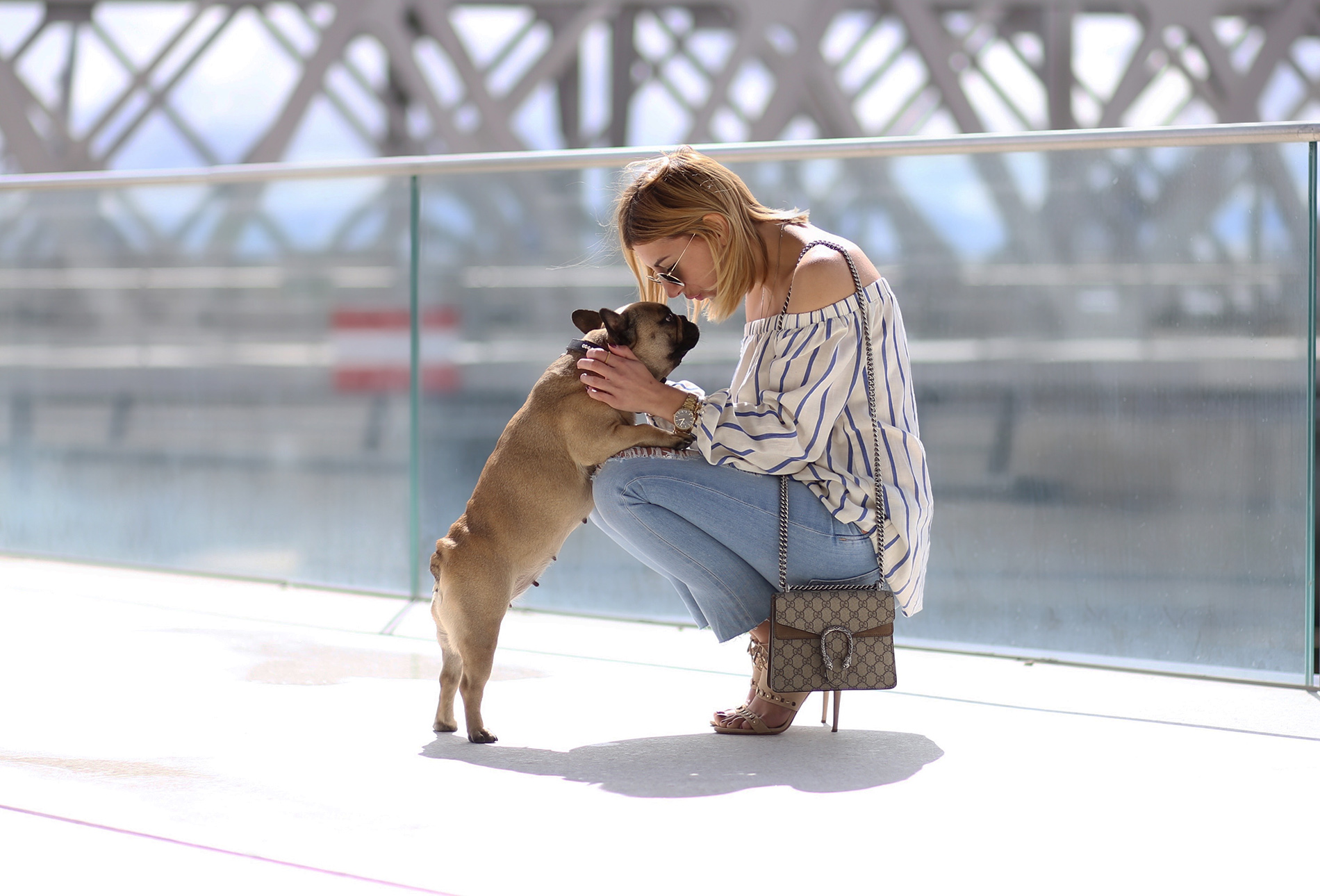French-bulldog-blog-aylin